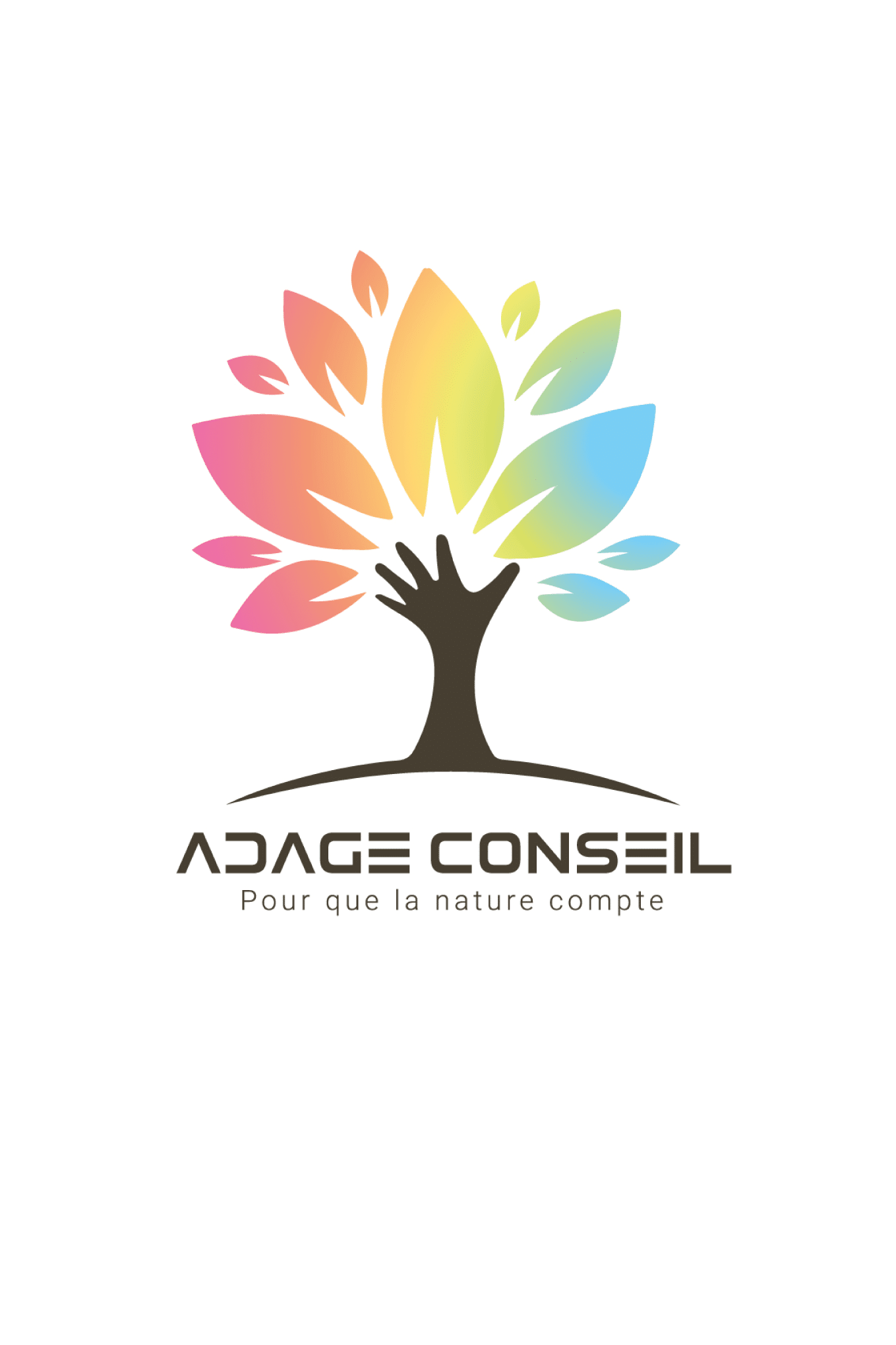 Domolandes Entreprise : Adage Conseil